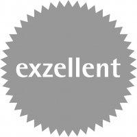 Logo des exzellent-Preises